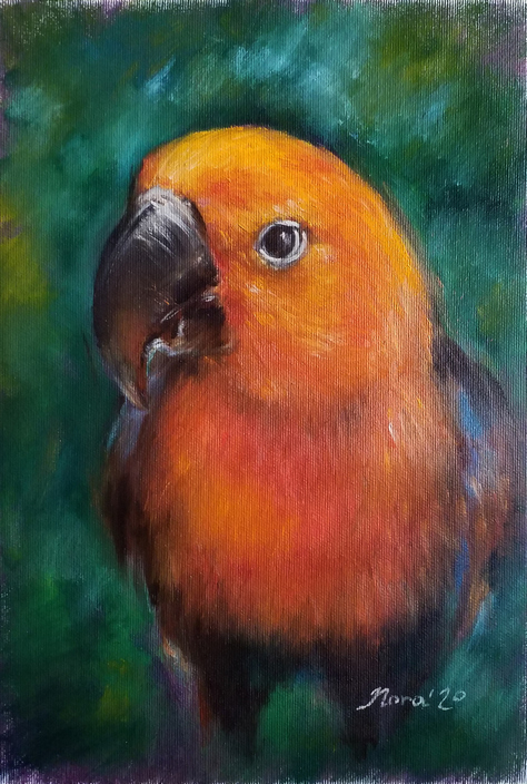 custom parrot portrait oil painting